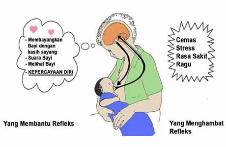Yang mempengaruhi dan menghambat hormon oksitosin - foto: WHO/UNICEF