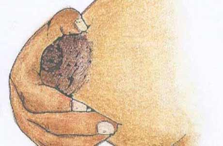 Memerah ASI: Cara memerah ASI dengan tangan