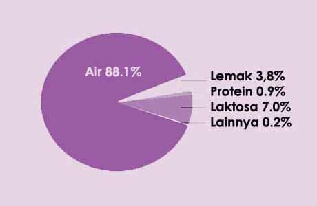 Tabel Komposisi ASI